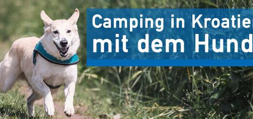 Camping in Kroatien mit dem Hund