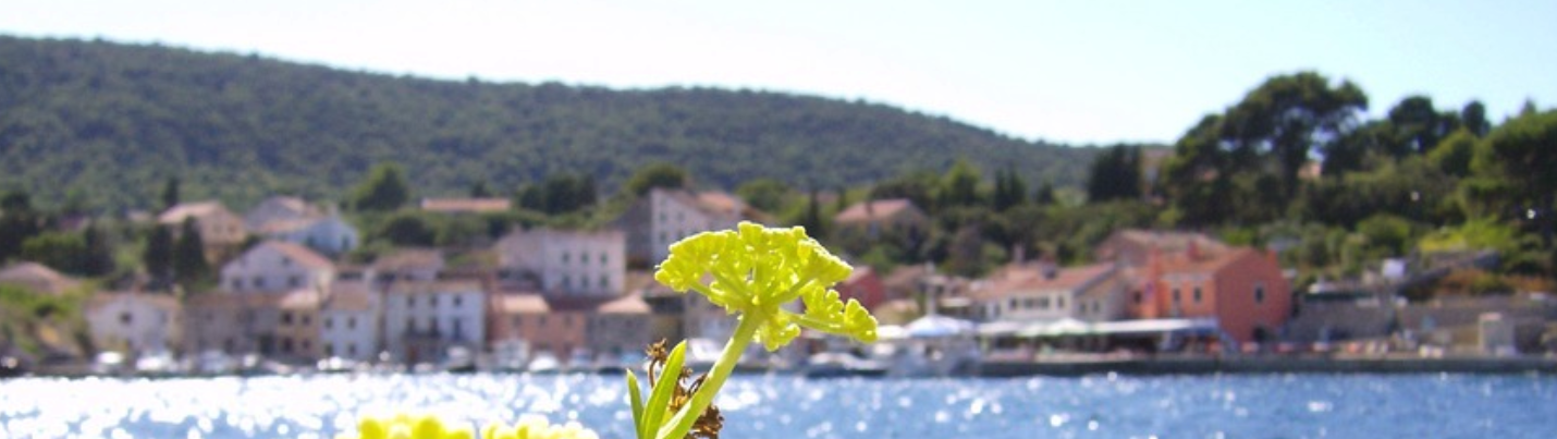 Losinj Insel Kroatien